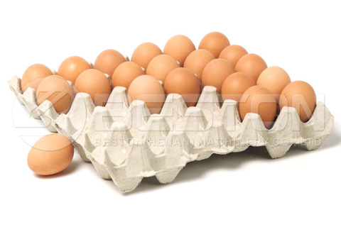 Egg Tray Produced by Beston egg tray making machine in india