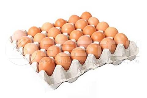 Yumurta Tepsileri