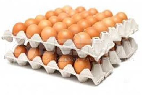 Bandejas de huevos