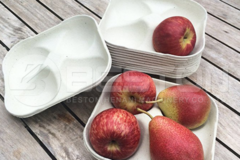 moulded apple trays