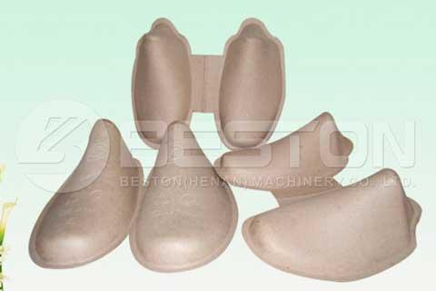Bandejas de zapatos de papel