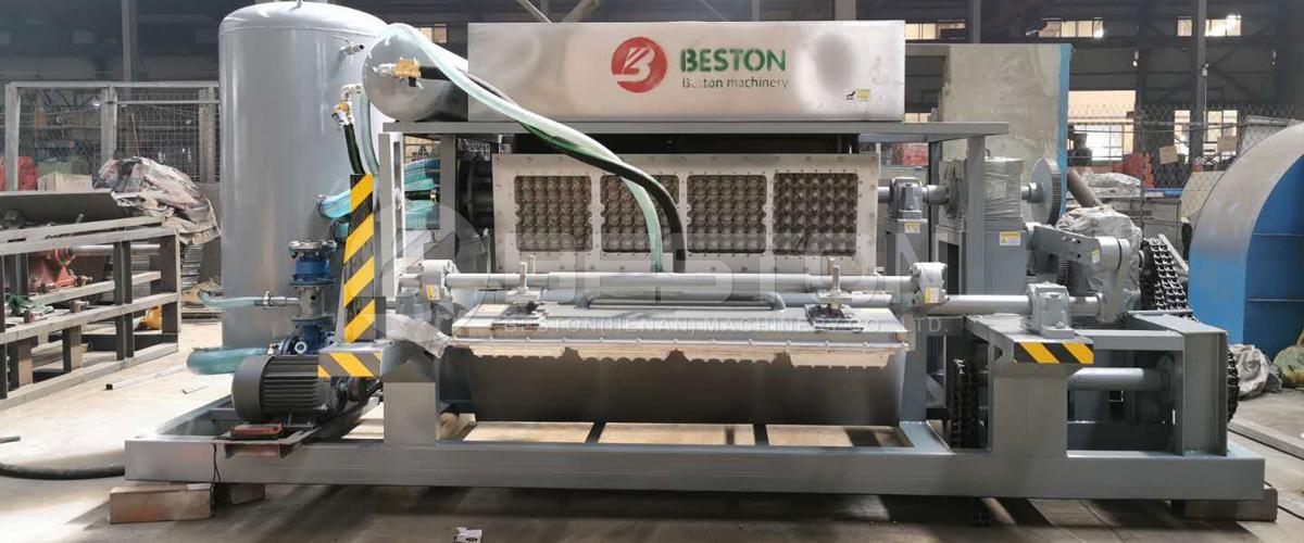 máquina de bandeja de huevos de pulpa de papel