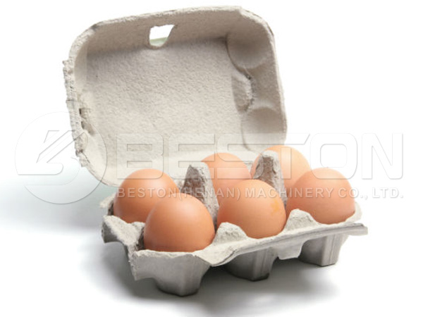 6 count egg box