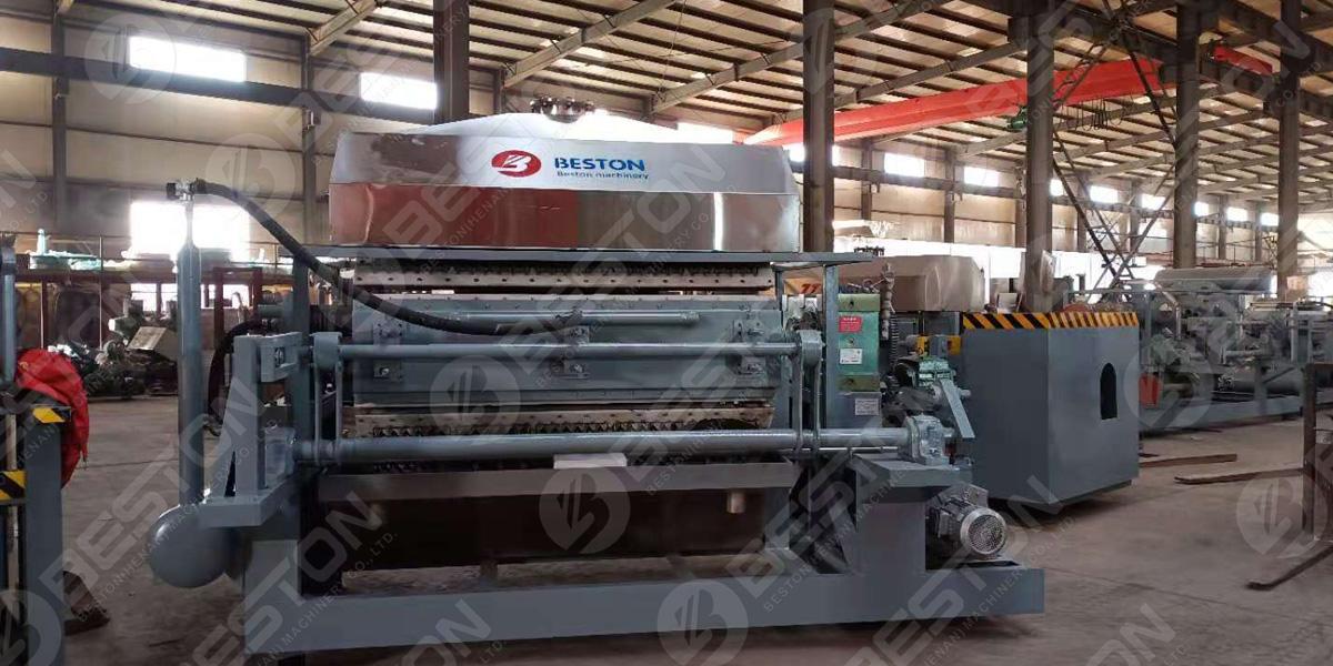 آلة صينية البيض BTF5-8 يطلبها الزبون الهندي