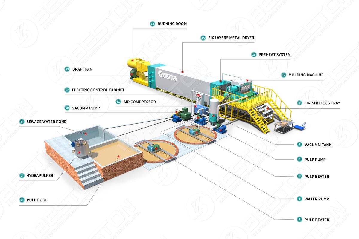 Disposition 3D de Beston Carton d'oeufs faisant la machine