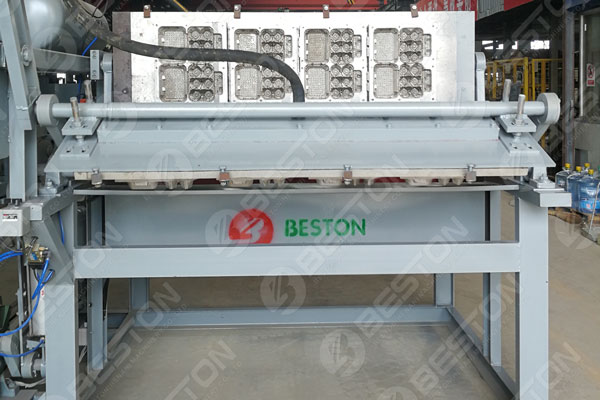 Beston Egg Tray Machine in Spain